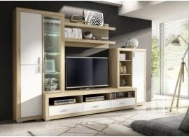 Moderní obývací stěna mono, dub sonoma-bílá, 310x198