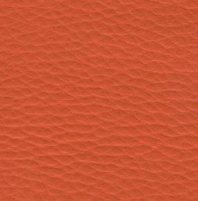 04. SK4 - oranžová