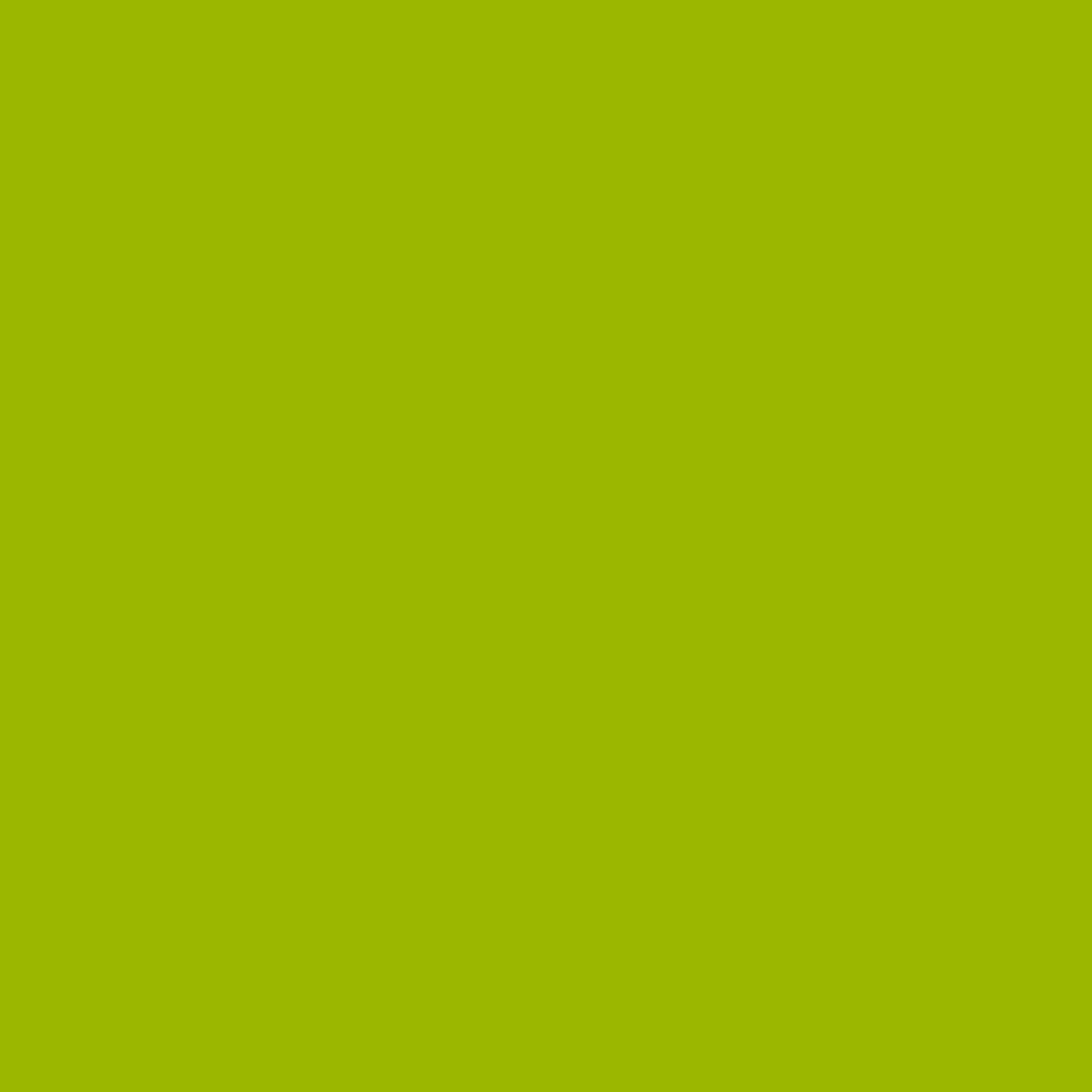 07. zelená