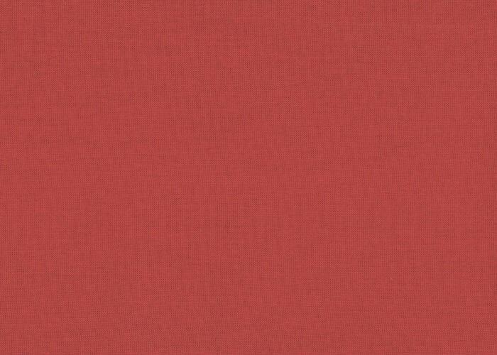 Alcone 35 red