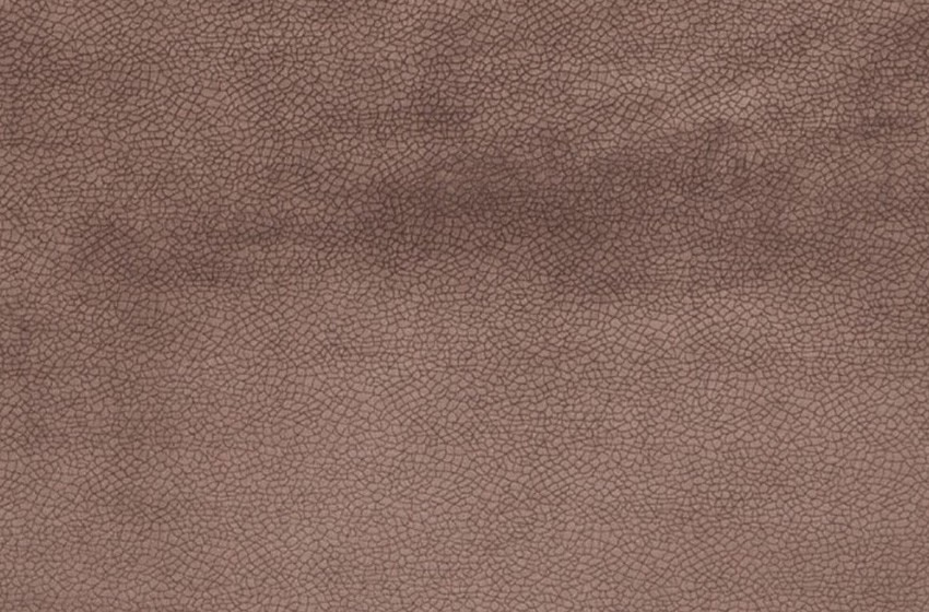D - Fontanel-35-seal-brown