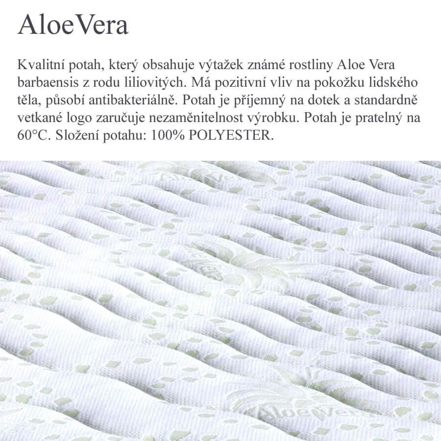 02. Aloe Vera